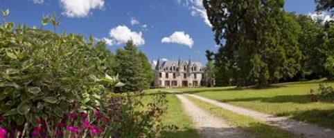 Château de Nesmy